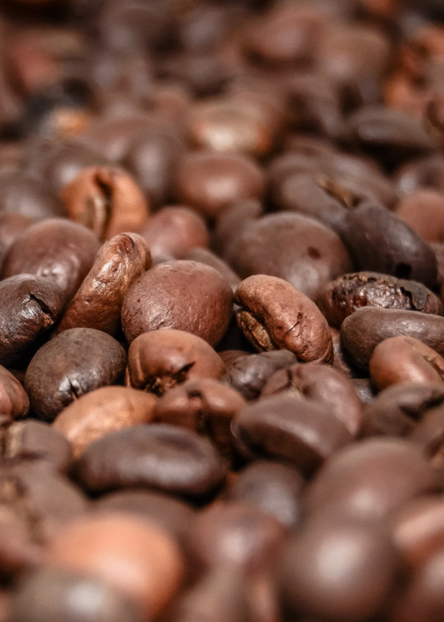 Medium Dark Roasted coffee beans